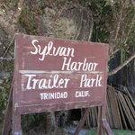 Sylvan harbor rv park cabins