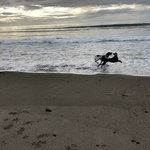 Sea sand rv park