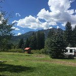 Bruce spruce ranch