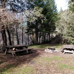 Scott flat campground