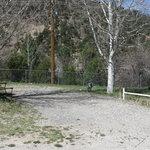 Twin spruce rv park