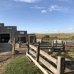 Buffalo gap guest ranch