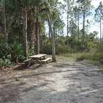 Panther pond camping area