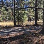 Silver creek truckee campground