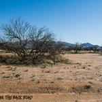 Buenos aires national wildlife refuge
