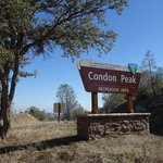 Condon peak campground