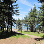 Sugar pine group campground
