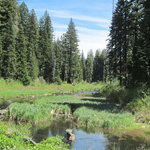 North fork campground rogue river siskiyou nf