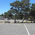 Horsfall campground