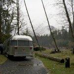 Hoh campground