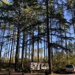 Margaret mckenny campground