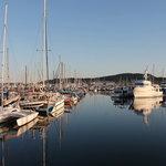 Port of anacortes cap sante marina