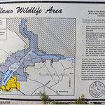 Alamo lake wildlife area