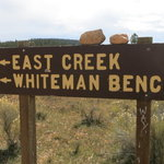 Whiteman bench