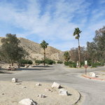 Lower cottonwood cove campground