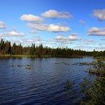 Kelly lake campground