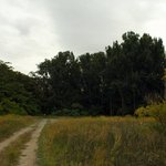Gallagher flat state wildlife recreation area