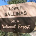 Lower gallinas campground
