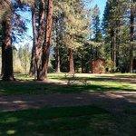 Cold springs resort rv
