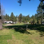 Cold springs resort rv