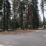 Sugar pine point state park