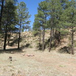 Grover spring canyon