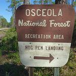 Hog pen landing