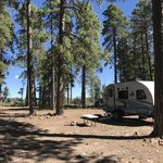 Colcord ridge campground