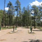 Woods canyon dump station