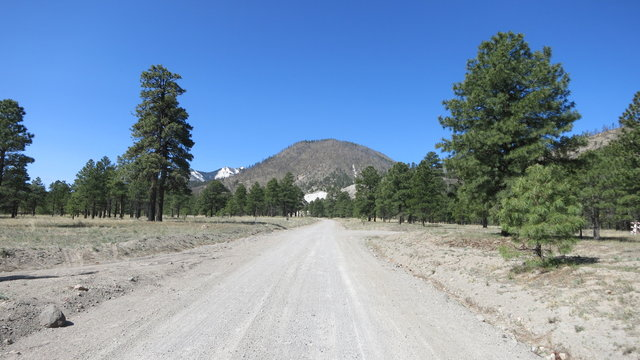 Forest road 418