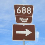 Forest road 688