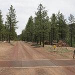 Shultz pass road