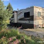 Halibut campground