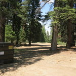 Tenmile road camping area
