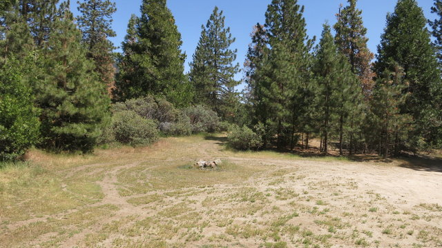 Grouse meadow camping area