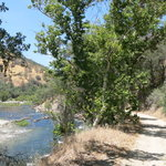 Bear wallow camping area