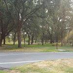 Sycamore grove campground