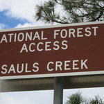Sauls creek
