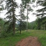 Barlow creek road