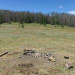Forest road 270 routt nf