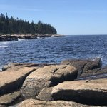 Schoodic woods campground