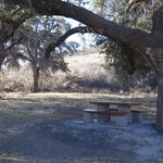 Texas 17 picnic area ft davis tx