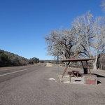 Texas 118 picnic area ft davis tx