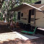 Hampton tract green swamp wilderness preserve