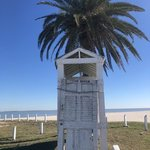 Magnolia beach