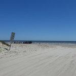 Brazoria beach