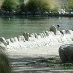 Whitewater preserve
