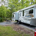 Chignecto north campground