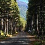Elkwood peter lougheed provincial park