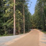 Blanket creek provincial park